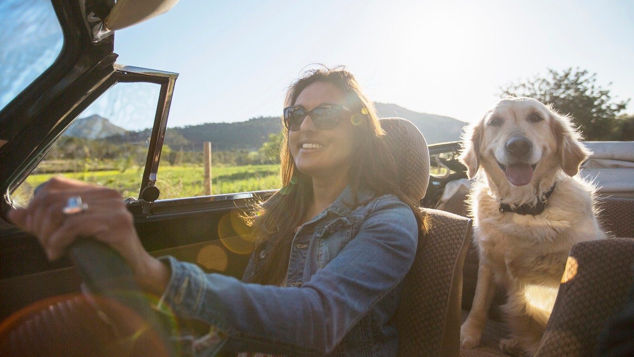 A woman and a dog in car; image used for HSBC Credit Card to Travel.